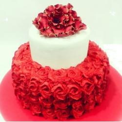 red rose cake-250x250