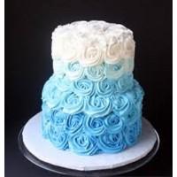 Double Tier Cake