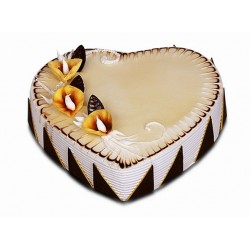 Special Heart Cake