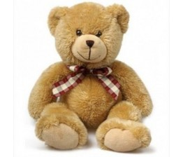 18-inch soft teddy