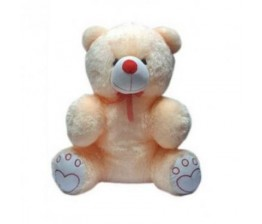 20 inch cute teddy