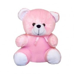 Pink Small Teddy