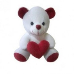 White Small Cute Teddy