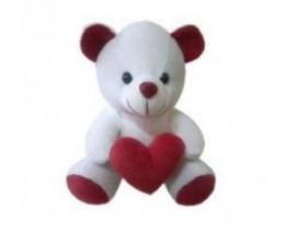 White Small Cute Teddy