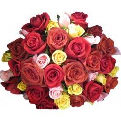 30-Mixed Roses
