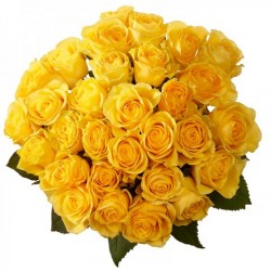 32 Yellow Roses Bunch