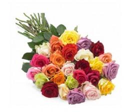 Bright Shining Roses