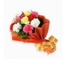 10-Mixed Carnations Bunch