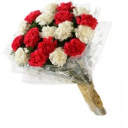 15-Red And White Carnations