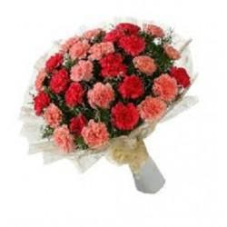 Carnations Flowers Bouquet