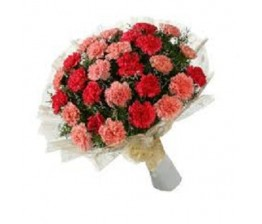 Carnations Flowers Bouquet