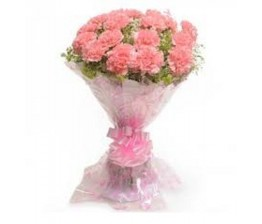 Pink Carnations Flower Hand Bunch