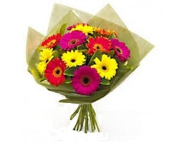 Mix Gerbera Flowers Hand Bunch