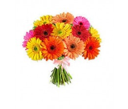 Mixed Gerbera Flowers Bunch