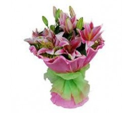 Special Pink Lily