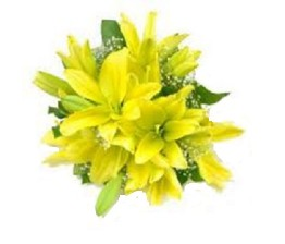 Yellow Lily Bunch